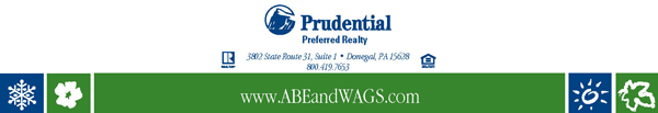 Prudential Information