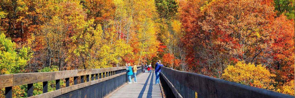 fall-bridge